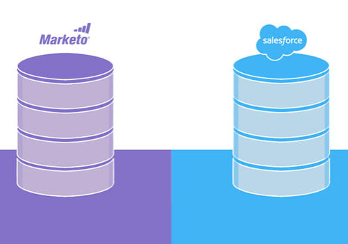 salesforce-to-marketo-sync-infographic-leadmd
